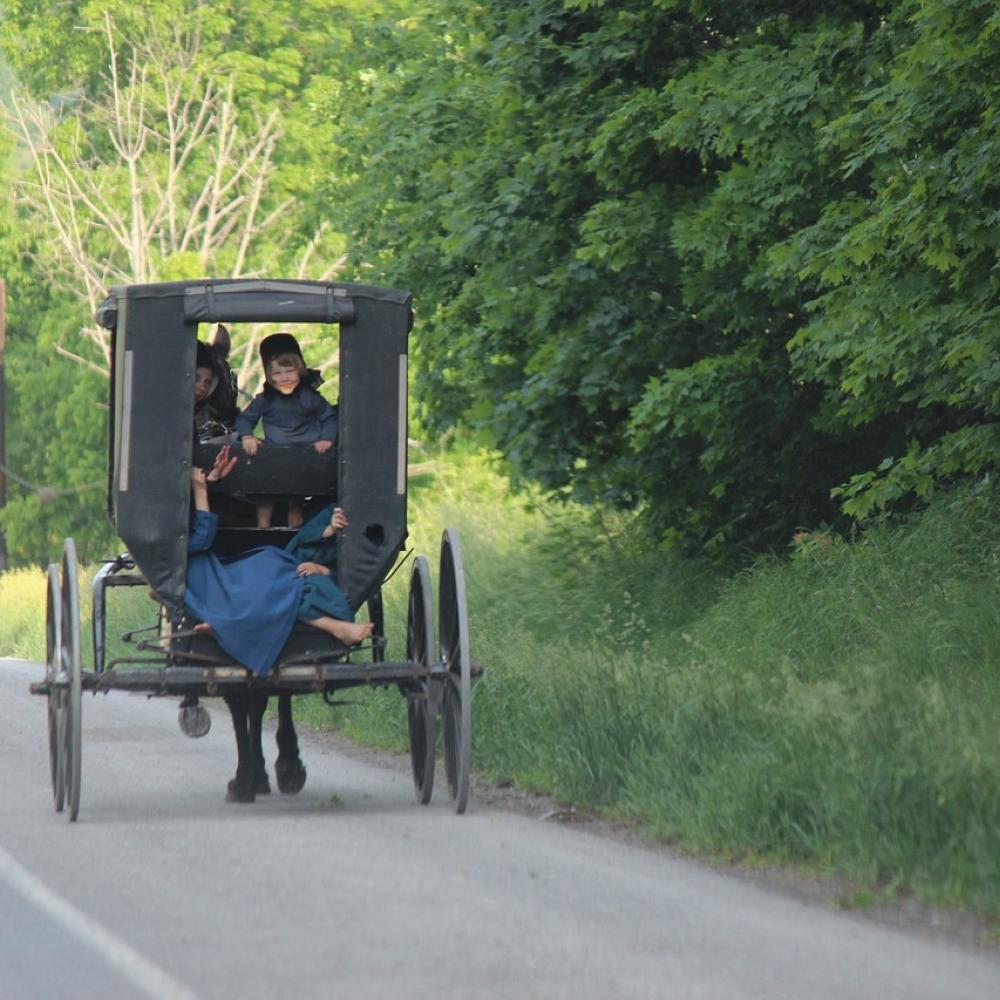 Authentic Amish Tours